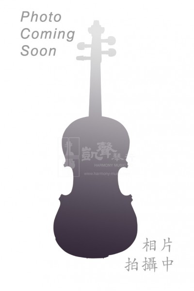 Dorfler Violin Bow 小提琴弓 German W. E. Dorfler No. 21 4/4 Pernambuco