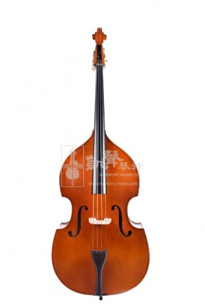 Aiki T Series 1/2 Double Bass (Shaded Back)