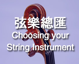 Harmony Music String Instruments