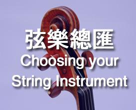 Harmony Music String Instruments